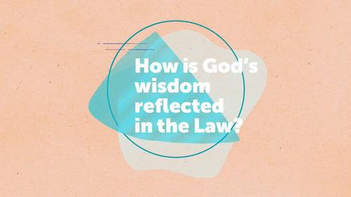 Gods Wisdom  the Law