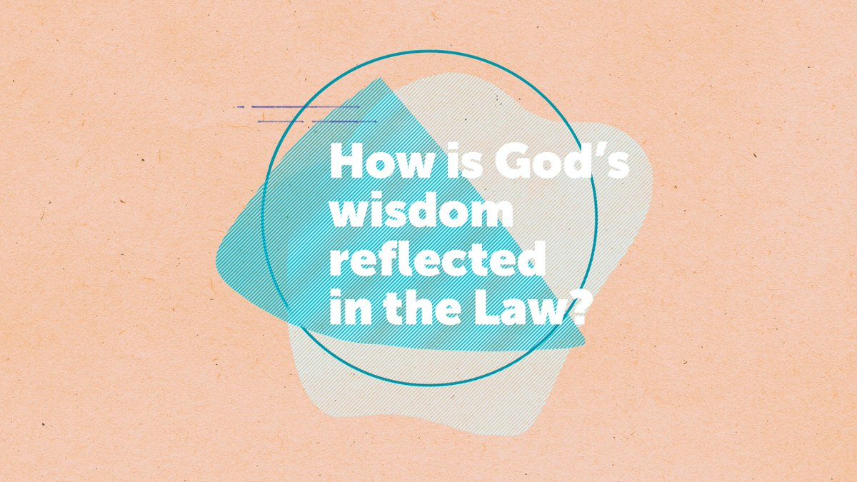 Gods Wisdom  the Law